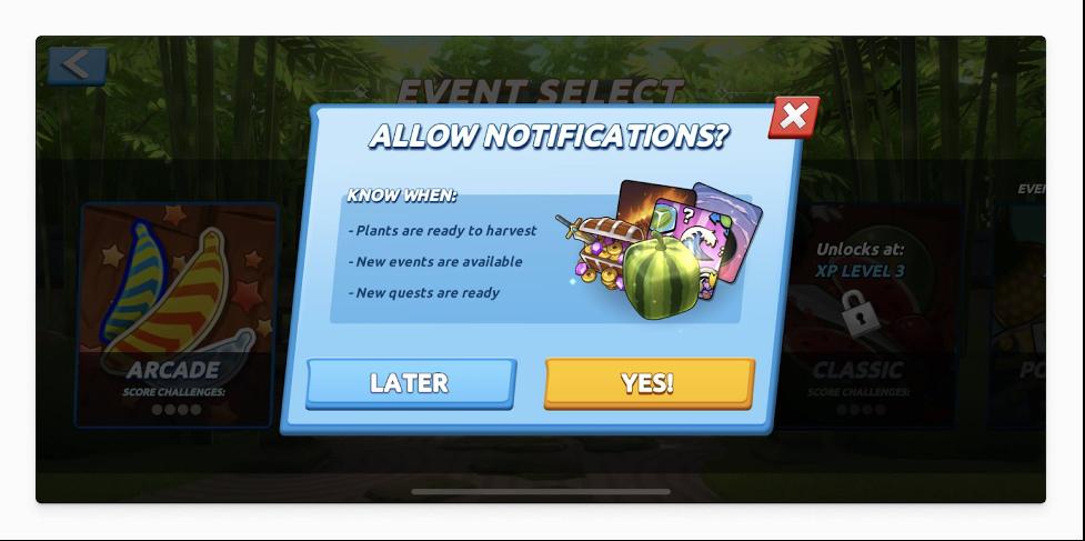 push notification permission