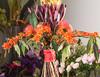 Цветочный этикет: какие цветы дарить мужчинам