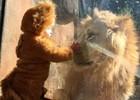 Малыш в костюме львенка встретился лицом...